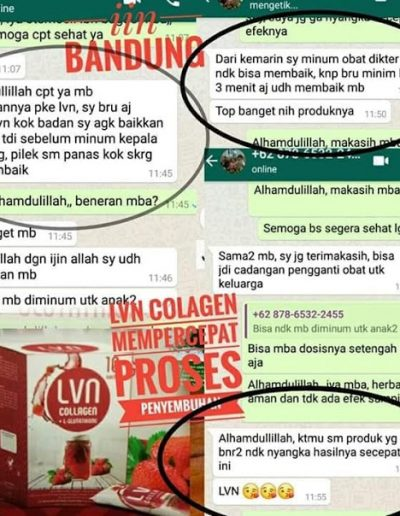 jual lvn collagen